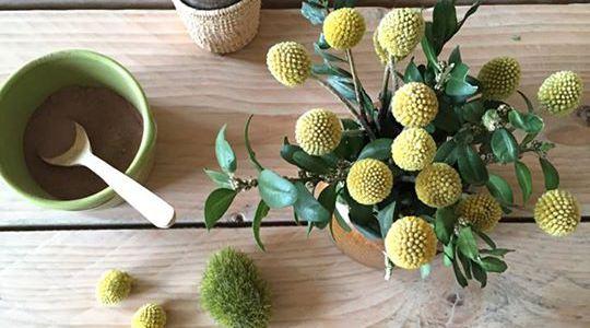 les petites emplettes eshop l univers beau et naturel rise and shine. Black Bedroom Furniture Sets. Home Design Ideas